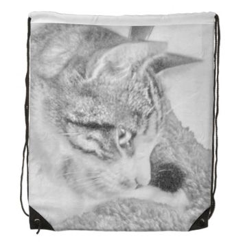 Grey Scale Cat