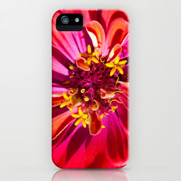 Red Zinnia iPhone & iPod Case by Legends of Darkness Photography