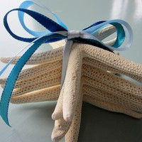 Beach Decor White Starfish Gift Set.. on Luulla