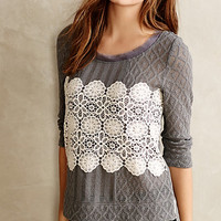 Lacy Overlay Sweater by Meadow Rue Grey