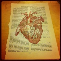 GOTHIC VICTORIANA MEDICAL, RED HEART, LOVE. OLD BOOK PRINT ARTWORK. HOME DECOR