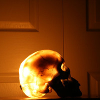 Skull Light/ Lamp