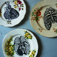 Anatomical Vintage China Dinner Plate Wall Decor