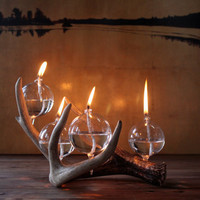 Modern Rustic Antler Oil Lamp