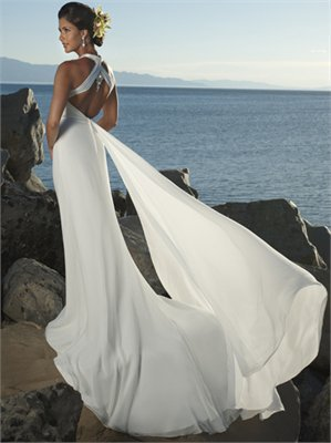 V-Neckline Watteau Train Chiffon Beach Wedding Dress WDB015