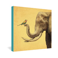 Eric Fan Elephant And Bird Gallery Wrapped Canvas