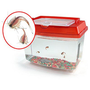 Triops Deluxe Kit