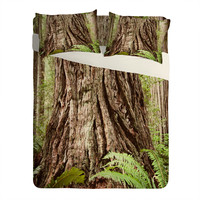 Bree Madden Redwood Trees Sheet Set Lightweight