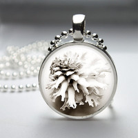 Round Glass Bezel Photo Art Pendant Beach Sea Shell Pendant Seashell Necklace With Silver Ball Chain (A3823)