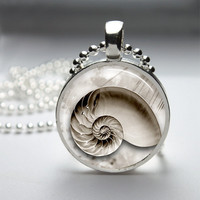 Round Glass Bezel Pendant Beach Sea Shell Pendant Seashell Necklace Photo Pendant Art Pendant With Silver Ball Chain (A3825)