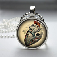 Round Glass Bezel Pendant Anatomical Pendant Heart Necklace Photo Pendant Art Pendant With Silver Ball Chain (A3729)