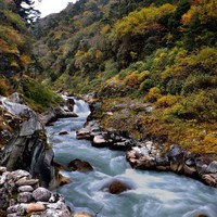 stream in the himalayas