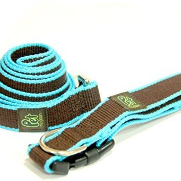 Adjustable Dog Wear Collar (Size Varies) and Basic Dog Leash (Length Range from 50'' to 70'')