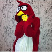 Kigurumi Costumes Angry Birds Lovely Cartoon Kigurumi Costume