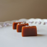 Fleur de Sel Soft and Chewy Caramels 1lb in an by TheCaramelJar