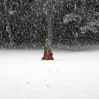 Red riding hood in Blizzard Snow forest  - Winter woman photography -  Fine Art Photography Print 6x6 (15x15cm)