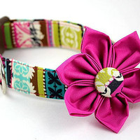Dog Collar and Flower Set.....Farmer's Market Royalty.....Made to Order in Your Choice of Size