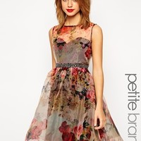 Little Mistress Petite Printed Organza Prom Dress