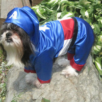 Avengers Captain America Dog Costume size Medium