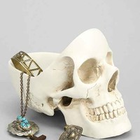 Skull Desk Catch-All Dish- Assorted One