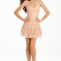 Lace Dress with Peek a Boo Tulle Skirt