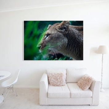 THE QUEEN - Lioness - African Lion - Gift Ideas - Africana - Animal Art - Lion - Big Cats - Gift For - Africa - Travel - Wall Art - Gift