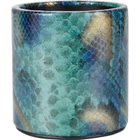 Peacock Python Pencil Cup
