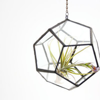 Hanging //recycled glass// Terrarium - Small Dodecahedron