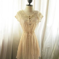 Chantilly Marie Antoinette Chiffon Lace Beige Romantic French Nude Ballerina Jane Austen Breakfast at Tiffanys Alice in Wonderland Dress