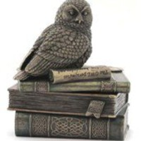 Gift Ideas | Snow Owl On Books Trinket Box