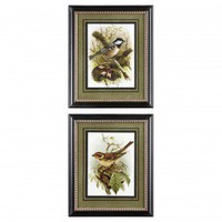 Uttermost Bird in Tree Framed Print Set - 33528