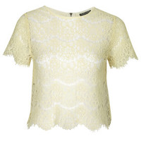Scallop Lace Tee - Tea Stained