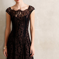 Leopold Lace Dress
