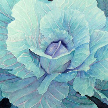 Cabbage Watercolor Painting 8 X 10 .. on Luulla