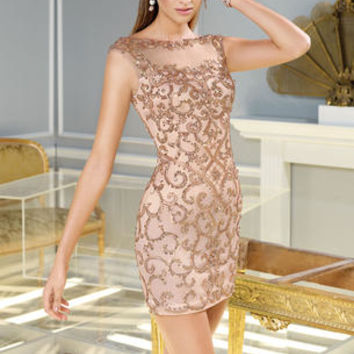 Claudine for Alyce Paris 2290 Claudine for Alyce Paris Prom Dresses, Evening Dresses and Homecoming Dresses | McHenry | Crystal Lake IL