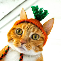 Carrot Costume - Cat or Dog