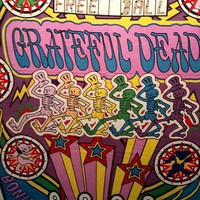 Grateful Dead Tapestry Pinball