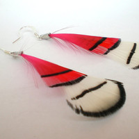 Feather Earrings Bright Pink and White by donaarg on Etsy