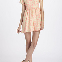 Shapes Collared Mini Dress