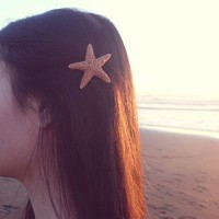 Buy One Get One Free Sale - Natural Sugar Starfish Barrette - Small - Beach Boho Cute Adorable Romantic Whimsical Whimsy Mermaid Collection