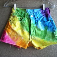 High Waisted Rainbow Levi&#x27;s Shorts (X-Small)