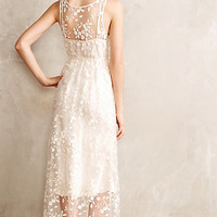 Sugared Lace Peignoir by Eloise Ivory
