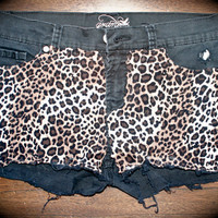 Cheetah front shorts
