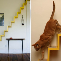 Unique cat furniture Kittyloft | Pets Trends