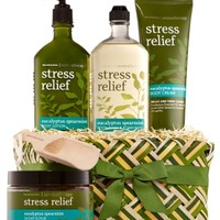 Aromatherapy Spa Gift Set Eucalyptus Spearmint