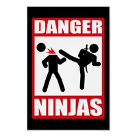 Danger Ninjas Poster from Zazzle.com