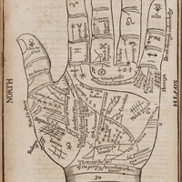 Antique Print Hand &quot;Fortune Teller&#x27;s Hand&quot; Steampunk Gothic Victorian Gypsy Circus Carnival
