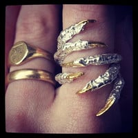 Bird Claw Finger Grasping Rings with Gold Nails