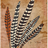 "Feather Print Modern Art Poster ""Five Fine Feathers""  11x14 Brown Vintage Inspired Wall Decor"