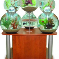 Unusual Aquarium - Opulentitems.com